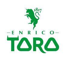 Enrico Toro